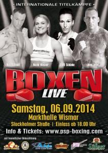 Plakat-Boxen-2014-HWI